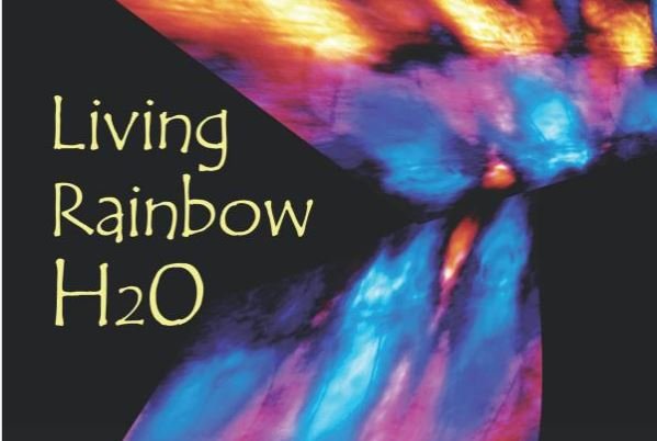 Mae Wan Ho's Book –  The Living Rainbow