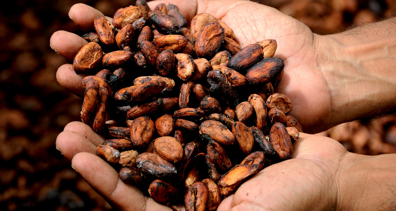 Hydrating HyFo Hot Cacao Recipe